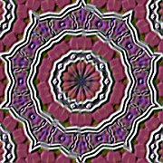 Purplevelvetlxl