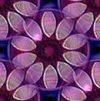 Violetpetals100