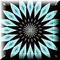 Blackchrysanthsm