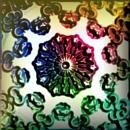 Colorflowerxlm