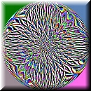 Embosschrysanthemum2
