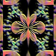 Flowersxlm