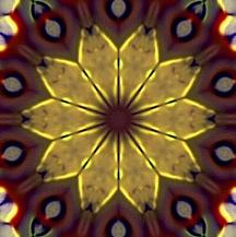 Goldfoilpoinsettia