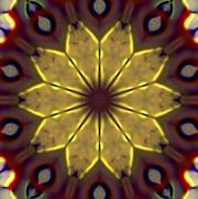 Goldfoilpoinsettial