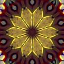 Goldfoilpoinsettialm