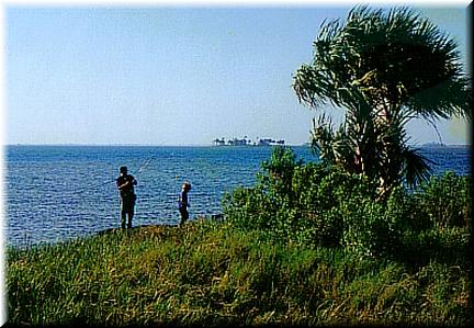 Gulfbeachfishing