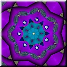 Mysticalrose