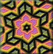 Niobexl_1