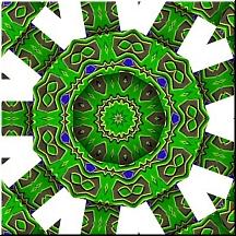 Reptileflower3x