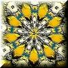 Chrysanthgreengold